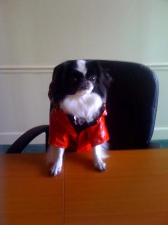 Hana in raincoat